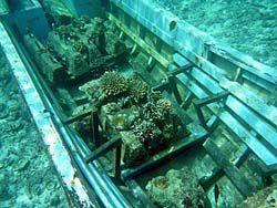 海中に沈められたボート