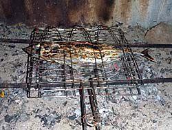 カツオ丸ごと一匹炭火焼き