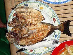 魚の炭火焼き