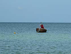 沖で漁をする人